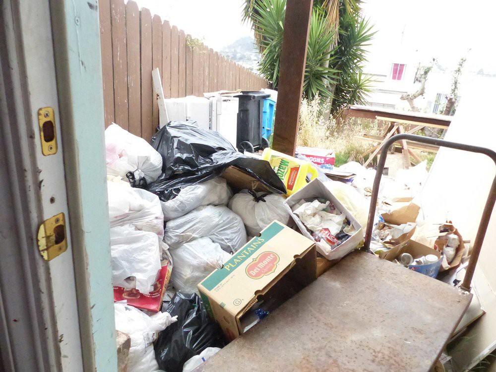 2. Nuestro patio trasero / Our backyard