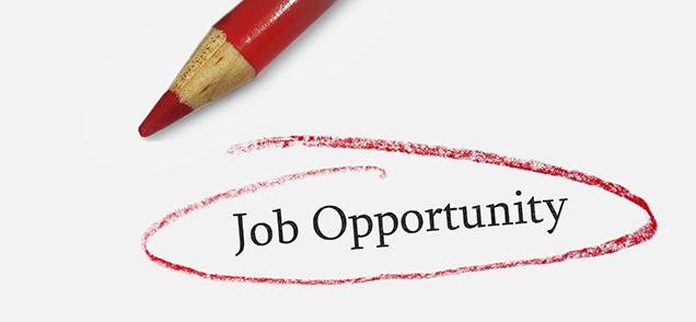 Job Opportunity Blog